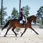 stableview_dressage-9204