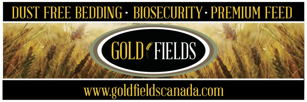 goldfields_banner_small